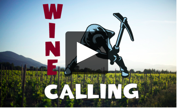Wine Calling: Awesome Natural Wine Documentary!