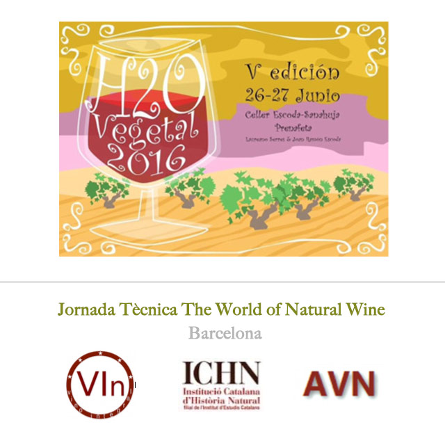 Spain is buzzing: H2O Vegetal and The Natural World of Wine