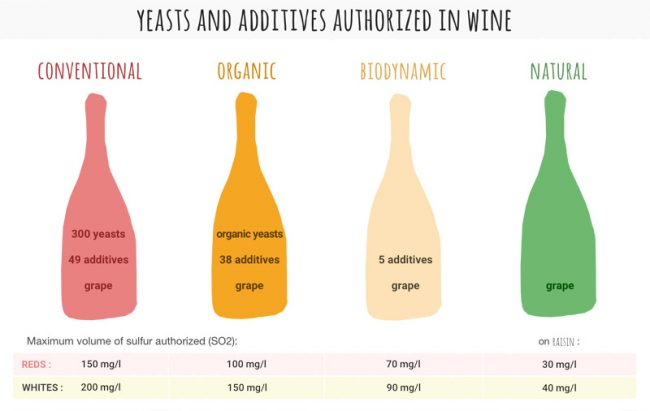 levels of yeasts and additives authorized in wine